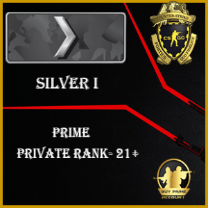 Cheap CSGO Accounts silver 1