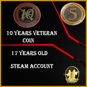 Exclusive 10 Years Veteran Coin